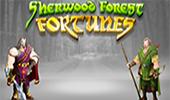 Играть в Sherwood Forest Fortunes на сайте Вулкан игровых автоматов картинка логотип