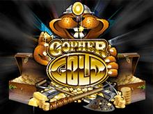 Золото Суслика в онлайн казино Вулкан 24