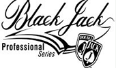 Игровой автомат Blackjack Professional Series от Вулкана Платинум онлайн картинка логотип