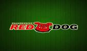 Red Dog Progressive от онлайн игрового клуба автоматов Вулкан на реальные деньги картинка логотип