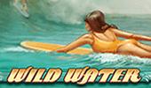 Wild Water на сайте Вулкан игровых автоматов картинка логотип