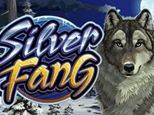 Игровой автомат Silver Fang